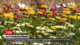 Новини України: квітковий фестиваль на Волині представляє понад 3 гектари краси
