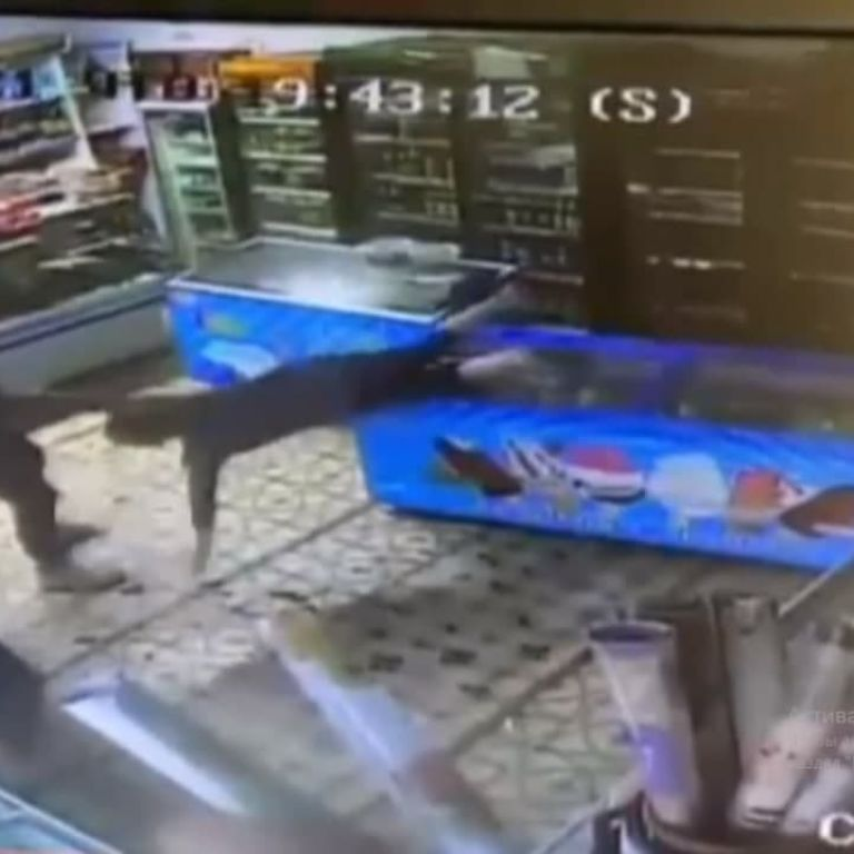 Пережила настоящий шок: под Харьковом покупатель с кулаками напал на продавщицу и разгромил магазин (видео)