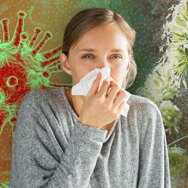 Сезонна алергія: у МОЗ розказали про симптоми та міфи