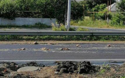 Стоїть нестерпний запах: під Дніпром з вантажівки на дорогу висипалися дохлі кури