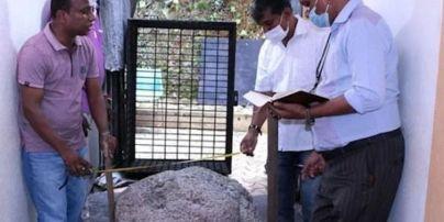 На Шри-Ланке случайно нашли драгоценный камень стоимостью 100 миллионов долларов: фото