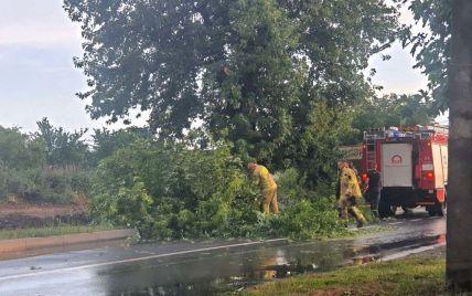 Поврежденные кровли, подтоплены дома, поваленные деревья и обесточивание: непогода бушевала в Украине
