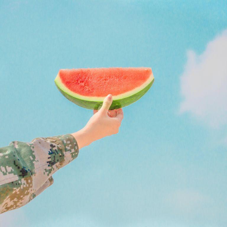 В Херсонской области фермеры хотят запатентовать местные арбузы: почему их ягоды особенные