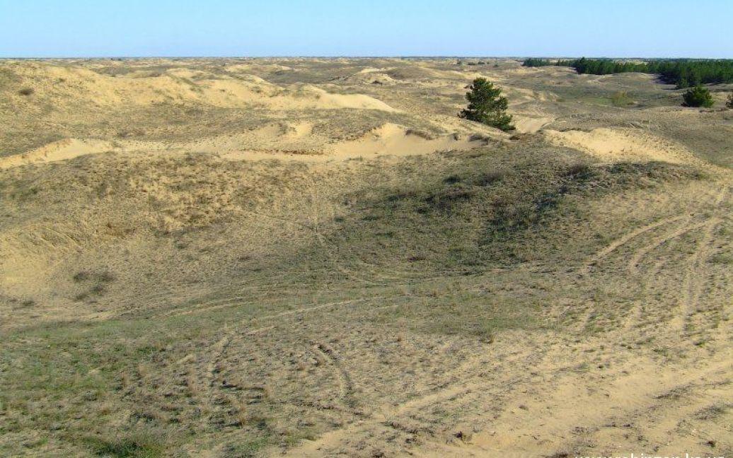 Пустыня возникла благодаря деятельности человека / © robinzon.ks.ua