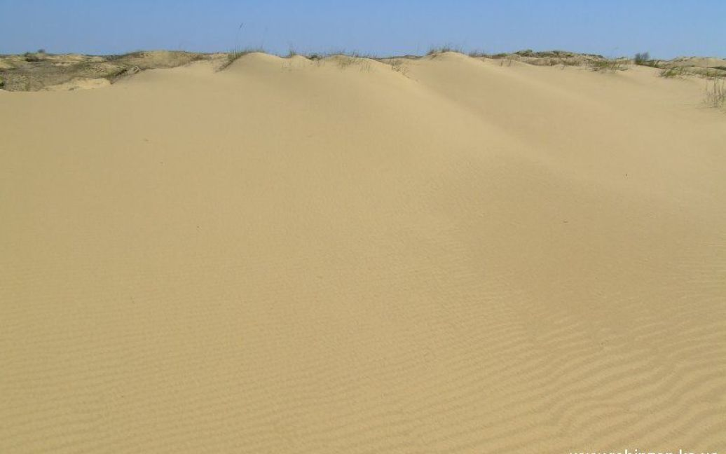 Олешковские пески являются одной из наибольших пустынь в Европе / © robinzon.ks.ua