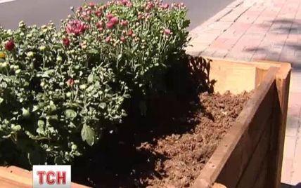 З-під Верховної Ради та Кабміну на Грушевського поцупили квіти