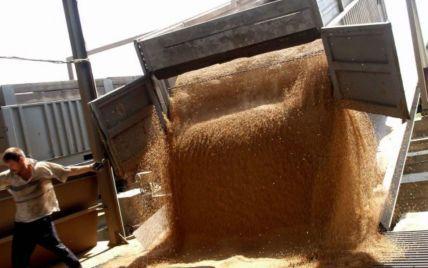 Украина установила рекорд по экспорту зерновых – Павленко