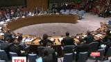Результаты президентских выборов в Украине одобрили члены Совета Безопасности ООН