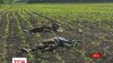 В Волынской области объявлен траур по погибшим под Волновахой