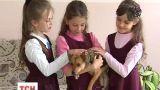 Волонтеры начали учить детей ответственности за животных