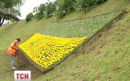 В Киеве появился крупнейший цветочный флаг Украины