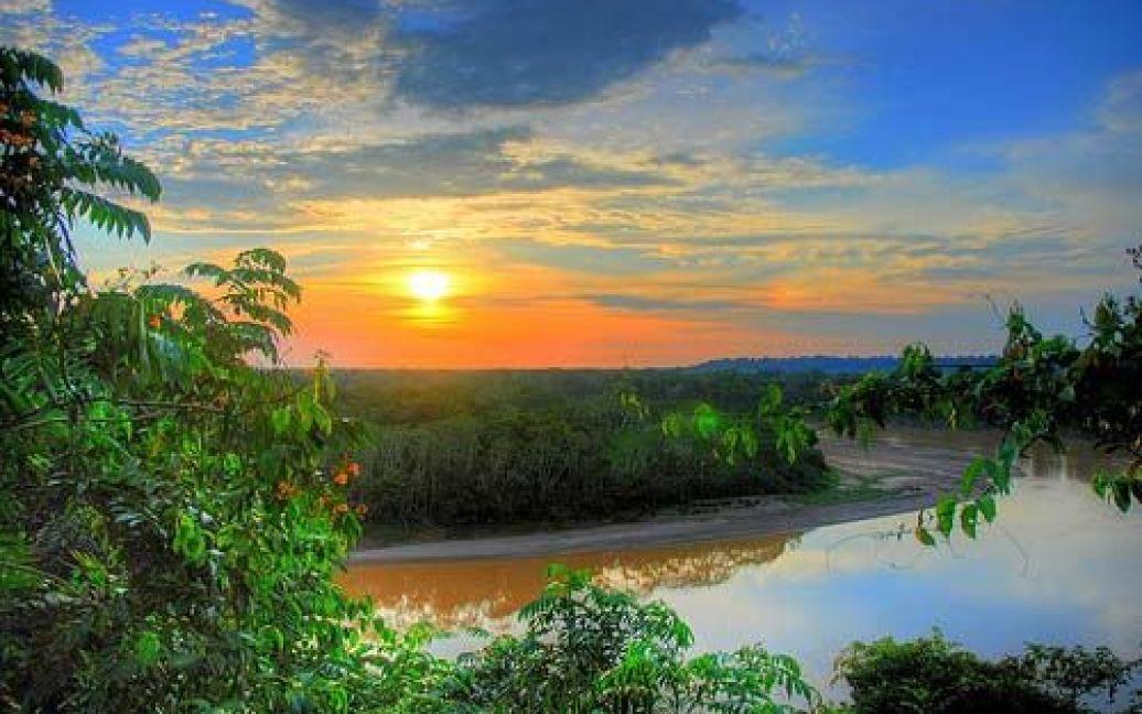 Джунглі Амазонії / ©