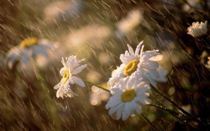 Сьогодні Україну накриє 34-градусна спека з дощем