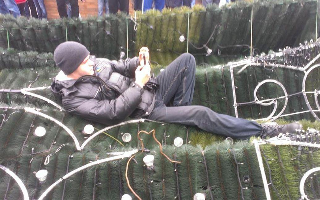 На ялинку залізли мітингувальники / © Facebook/Oksana Denysova