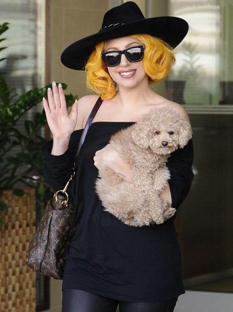 Леди Гага / © Фото EPA/UPG