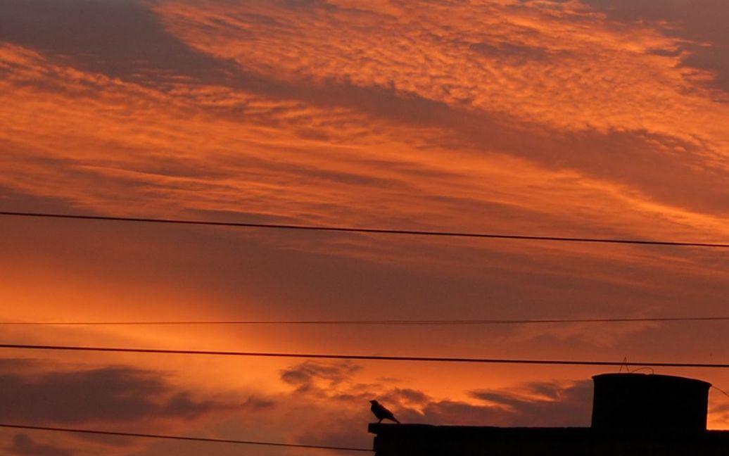 Захід сонця у Києві 11.07.2012 / © Наталія Двоєглазова