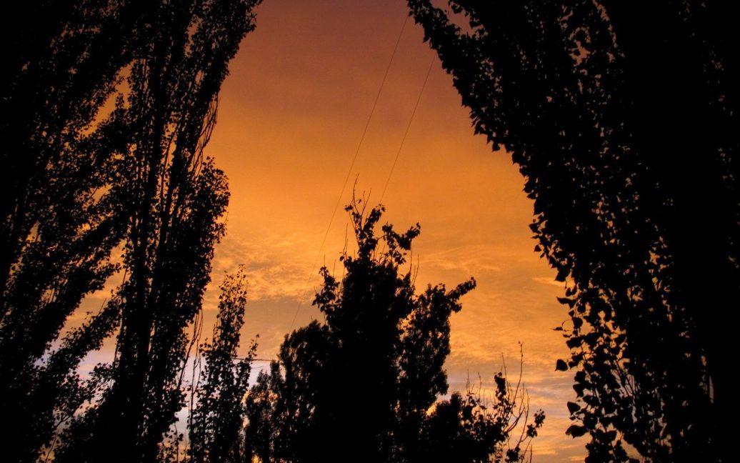 Захід сонця у Києві 11.07.2012. Фото vk.com/vetali1 / ©