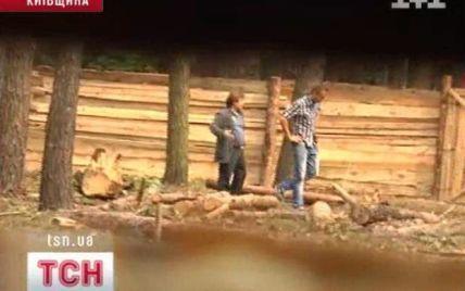 """На Київщині вирубують цілі ліси під маєтки, називаючи півстолітні дерева """"д*рьмом"""" і """"г*вном"""""""