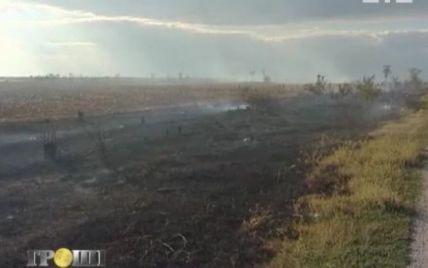"""Село на Миколаївщині 4 роки не бачило дощу через """"погодного терориста"""""""