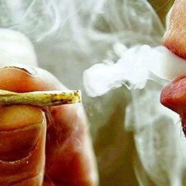 Українські пенсіонери захопилися наркобізнесом і вирощують коноплі