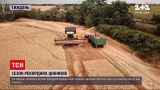 Новини тижня: в Україні зібрали рекордний врожай зернових, але чи означає це, що хліб здешевшає
