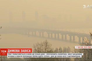Смог и запах гари в Киеве будет ощущаться еще как минимум несколько дней подряд