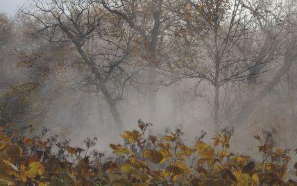Украинцев предупреждают о первых заморозках: синоптики рассказали, когда и где будет резкое похолодание