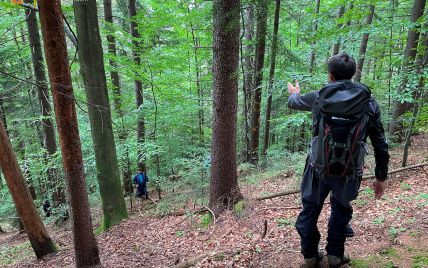 На Буковине нашли мертвым пропавшего в лесу грибника