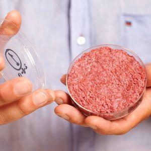 Сингапур стал первой страной в мире, где разрешено искусственное мясо