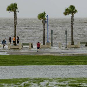"""У Новому Орлеані потужний ураган """"Зета"""" зніс десятки дахів та повалив дерева: є загиблий"""