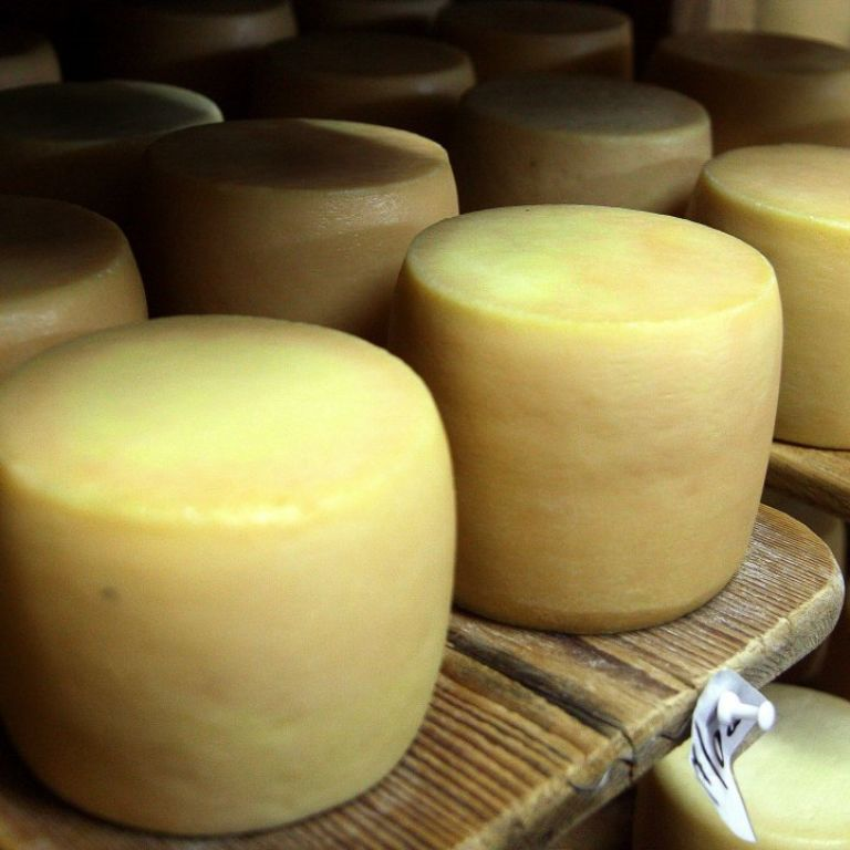 Україна суттєво збільшила експорт сиру: звідки його везуть