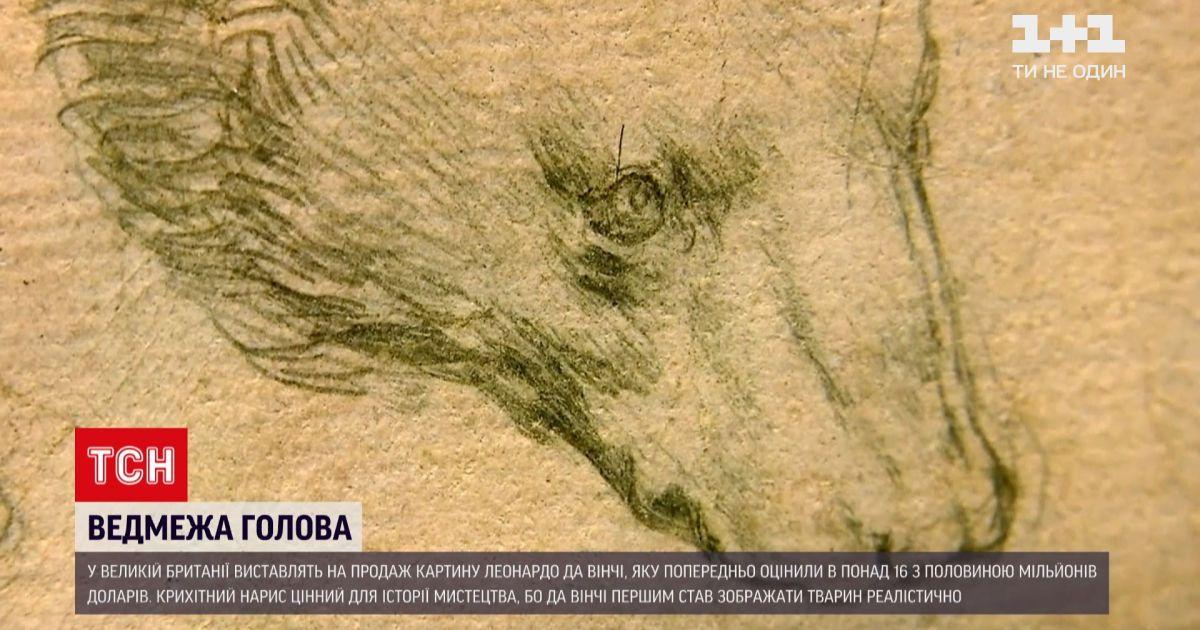 Новини світу: на британський аукціон виставили ведмедя, якого намалював да Вінчі