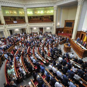 """Рада ухвалила законопроєкт Зеленського щодо """"інвестиційних нянь"""": хто отримає допомогу"""