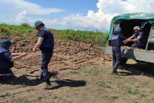В Бердянске нашли целый арсенал боеприпасов времен Второй мировой