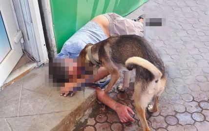 У Запоріжжі вірний пес не підпускав медиків до непритомного хазяїна