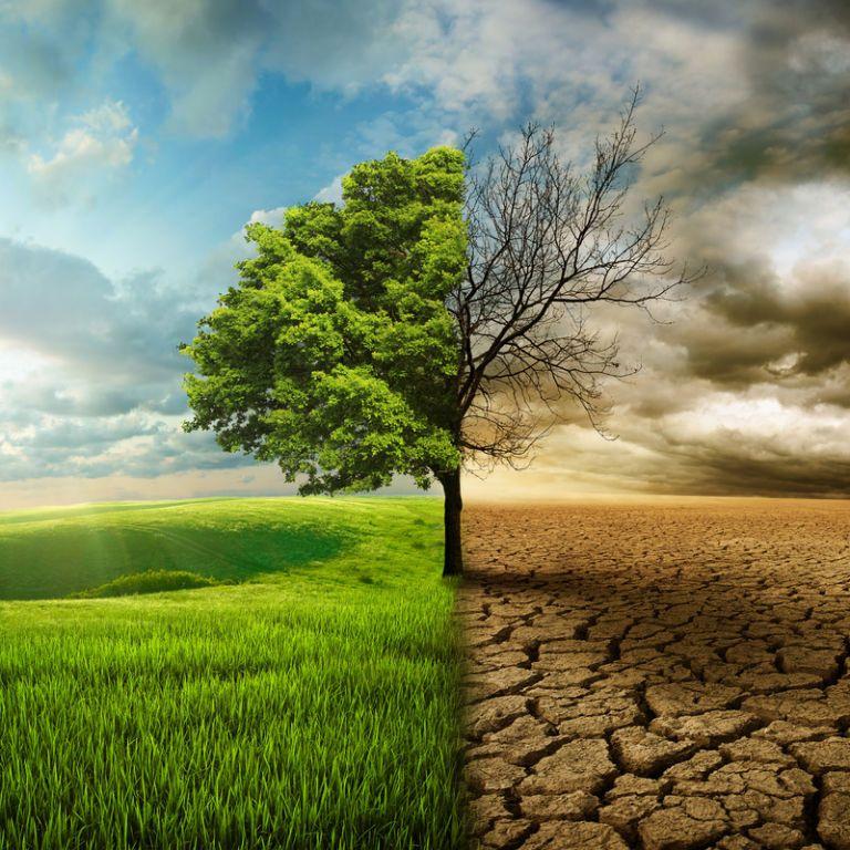 Удар потеплінням: Україна однією з перших витримує наслідки глобальної зміни клімату