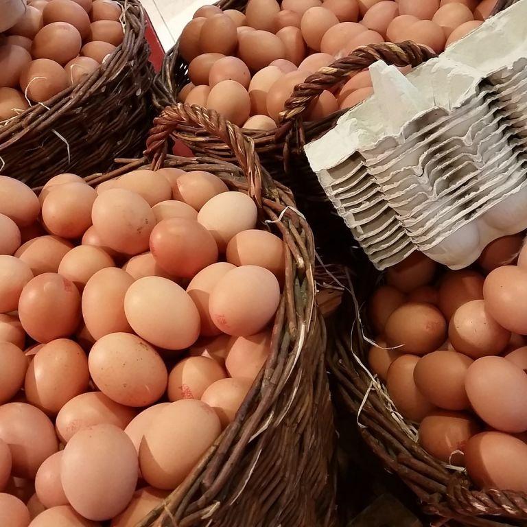 Українців попередили про можливе суттєве здорожчання курятини і яєць: яка причина
