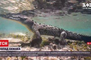 Новини світу: у Мексиці дівчина побила крокодила, щоб урятувати сестру-близнючку