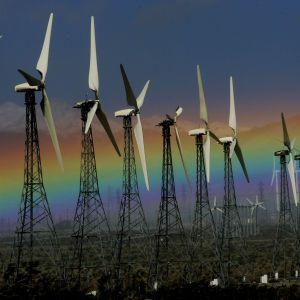 Энергия из мусора, отказ от газа и спасение планеты. Объясняем с Clear Energy, что делать украинцам