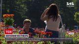 Новости Украины: на Волыни просто посреди поля устроили цветочный фестиваль