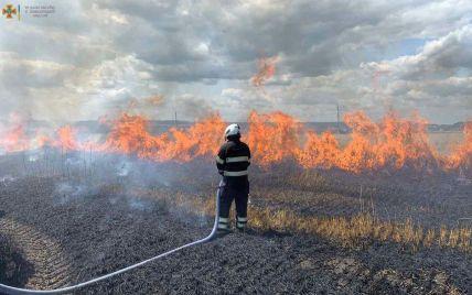 У Хмельницькій області через падіння високовольтної лінії спалахнуло поле з пшеницею (фото, відео)