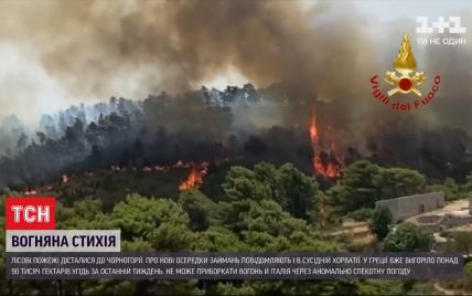 Лесные пожары распространились уже на Черногорию, Хорватию и Италию: как страны борются со стихией