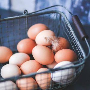 В Україні подешевшали яйця: названо їхню вартість