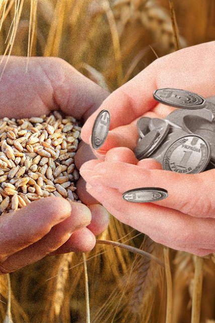 Рекорды украинских аграриев: каким будет урожай-2021 и изменятся ли цены в магазинах