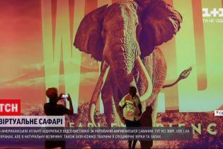 Новости мира: в американской Атланте открылась видео-выставка по мотивам африканской саванны