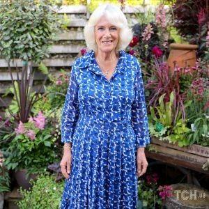 У новій сукні і з ножем в руках: фотографи зробили веселе фото герцогині Камілли