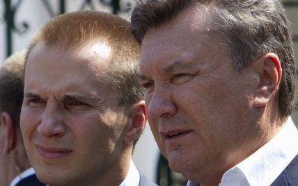 """""""Замороженная семья"""". Список близких к Януковичу компаний и лиц с заблокированными счетами"""